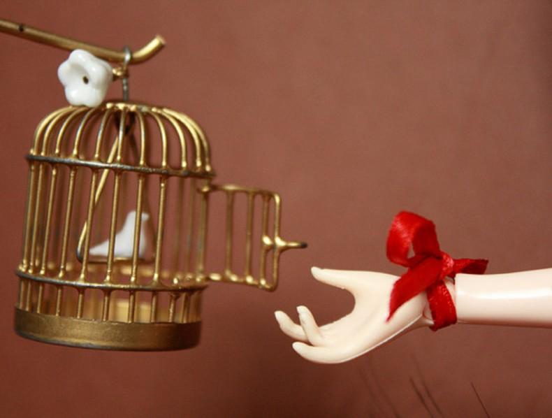 De vogel en het muziekdoosje
